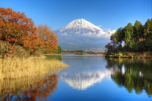 晴れた日は湖に見ごとな逆さ富士の姿が!紅葉は11月上旬から葉が色付き始める