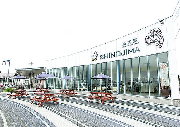 【写真を見る】「島の駅 SHINOJIMA」には、飲食可能なテラス席もある