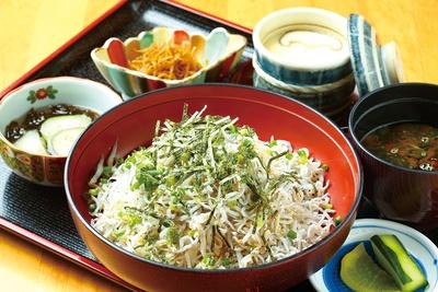 山盛りのシラスに驚く!「シラス丼」(1100円)