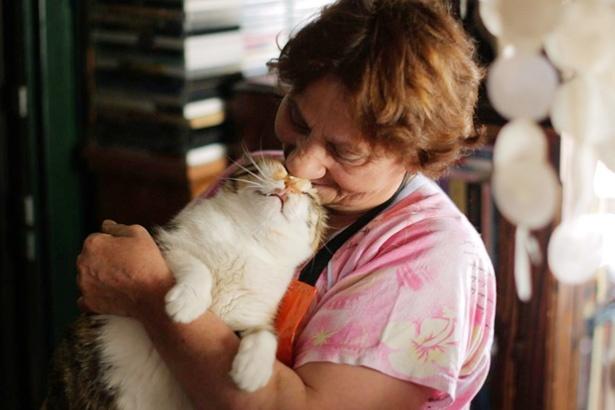 猫たちを愛おしそうに見守るイスタンブールの人々