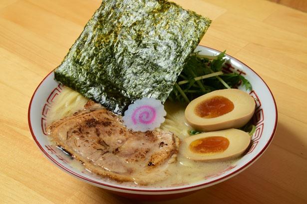 「鶏白湯そば味玉入り」(900円)/吉岡マグロ節センター