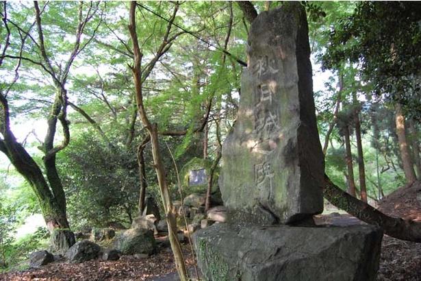 黒門から奥へ進んでいくと立っている石碑。この地に「秋月城」があったことを示している
