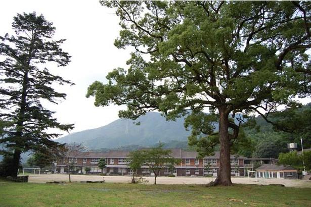 【写真を見る】木造校舎がノスタルジックな雰囲気を醸し出す。城跡に建つ「秋月中学校」