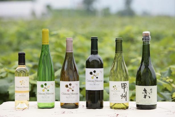 日本ワインとシャトー・メルシャンの魅力に触れるイベント開催