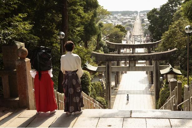 """宮地嶽神社は、TVCMで""""光の道""""と呼ばれる光景が紹介され話題になったインスタ映えスポット"""