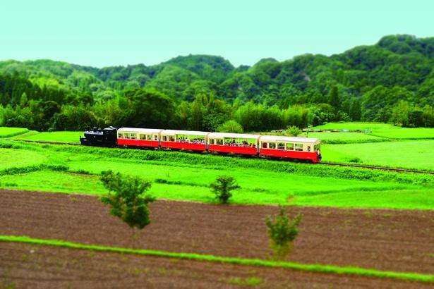 田園風景を走る小湊鐵道の里山トロッコ列車