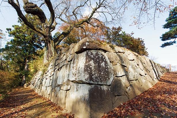 【写真を見る】築城当時のままの石垣が残る