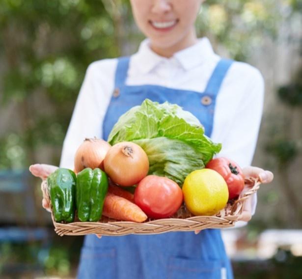 野菜の魅力を知り尽くす「野菜ソムリエ」