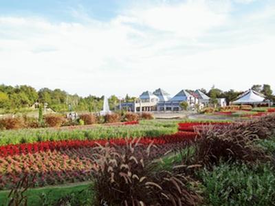 季節ごとに変わるフラトピア大花壇