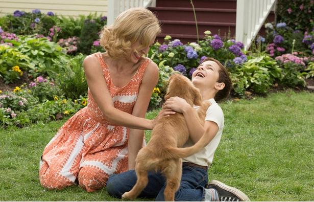 【写真を見る】イーサンになつく、やんちゃな子犬ベイリー