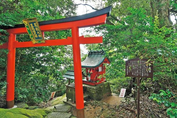 【写真を見る】境内にある八大龍王の一尊・黒龍を祀る黒龍堂/竹生島