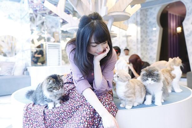 上田麗奈フォトコラム・優しくて気まぐれな生き物たちに囲まれて