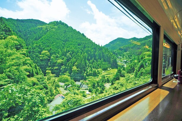 【写真を見る】枠が大きく設計されていて山岳区間のワイドビューが広がる/南海鉄道高野線 こうや花鉄道 天空