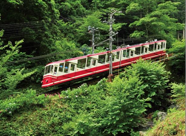 極楽橋駅と標高867mの高野山駅を結ぶ1930年開業のケーブルカー/高野山ケーブル