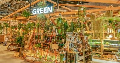 植物が豊富にとりそろうグリーンコーナー
