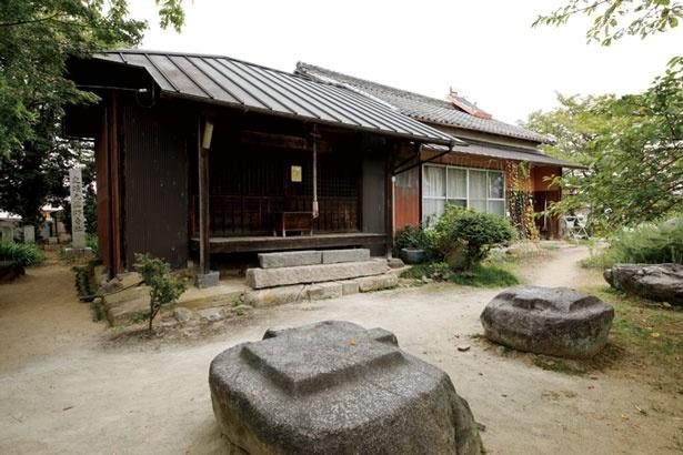 「本薬師寺跡」は飛鳥四大寺の一つにも数えられるほどの大寺院だった/本薬師寺跡