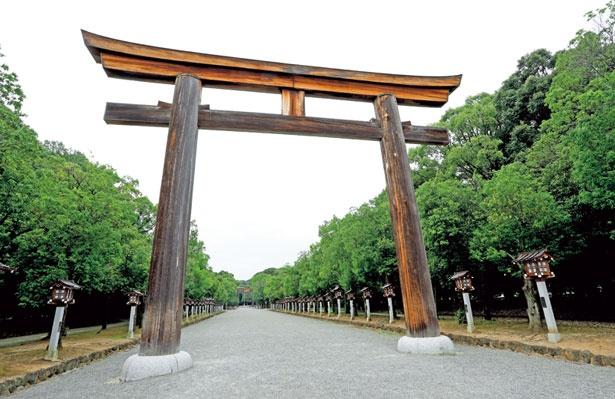大きな鳥居がそびえる表参道/橿原神宮