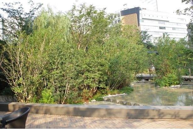 水や木々を配した広大な緑地を設けている