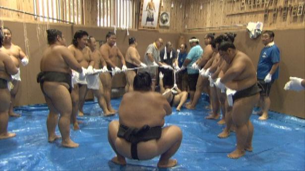 大相撲を支える知られざる職人が続々登場する