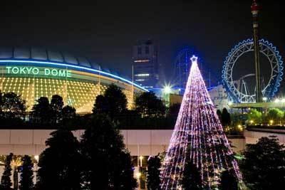 東京ドームとヒマラヤ杉のツリーは絶景♪
