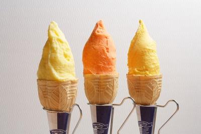 Dipper Dan サッポロファクトリー店のジェラート。左から「フロリダグレープフルーツ」、「北海道メロン」、「アルフォンソマンゴー」各¥320