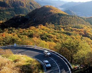 明智平展望台からは秋の絶景が楽しめる