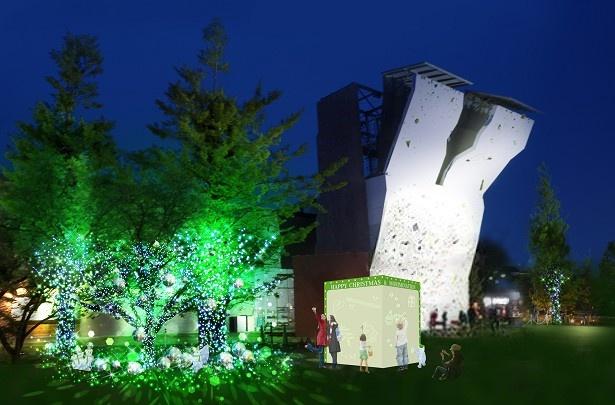 昭和の森では、11月3日(祝)から12月25日(月)までクリスマスイルミネーション「&Morimination」が開催される