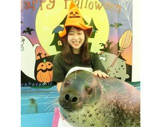 【東海】ハロウィーンコスで海獣たちと記念撮影を撮ってみよう!