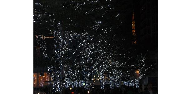 右手に東京タワー