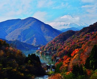 丹沢湖の奥には富士山の姿が。紅葉景色とぴったり!