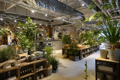 観葉植物やインテリア雑貨をい販売する「garage」。3階にはカフェとクラフトスペースを併設