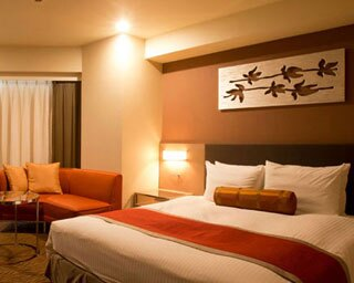客室に合わせたハイセンスなインテリアが魅力/ホテルサードニクス東京