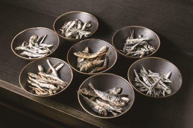 【写真を見る】塩煮干しそばにはセグロイワシやアジなど7種の煮干を使用