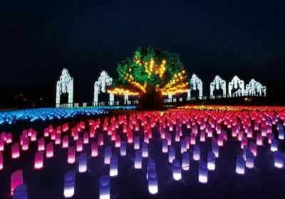 シンボルツリーとそれを取り囲む約3500個のランタンが織りなす「光の草原」