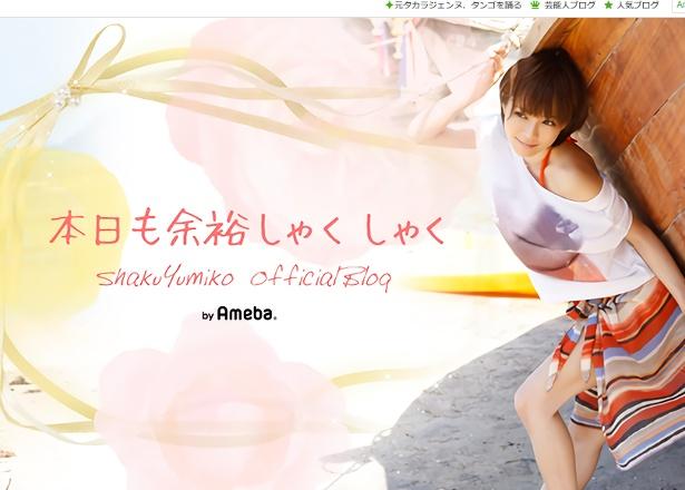 """釈由美子は""""子どもへのリスク""""を考えて育児ブログを休止"""