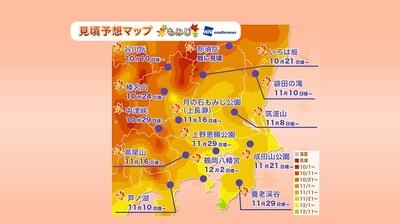 栃木県のいろは坂や群馬県の谷川岳は10月中旬、東京都の高尾山や神奈川県の芦ノ湖は11月中旬から見頃となる予想