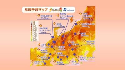 長野県の上高地や富山県の黒部峡谷トロッコ電車沿線、岐阜県の白川郷は10月中旬、新潟県の弥彦公園もみじ谷や福井県の九頭竜湖は11月上旬から見頃となる予想