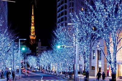 寒色系と暖色系の2つの光が木々を照らす「けやき坂イルミ ネーション」