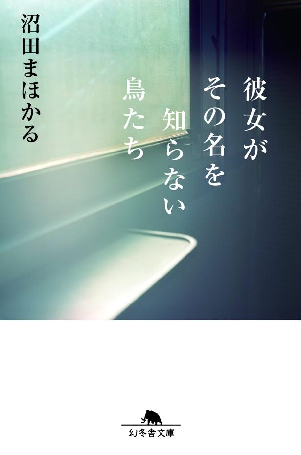 沼田まほかる作品のなかでも特に人気が高い(「彼女がその名を知らない鳥たち」沼田まほかる著/幻冬舎文庫刊)