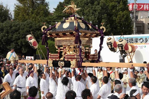 「神輿のまち」にふさわしく盛大に行われた「行徳まつり2016」での神輿パレード