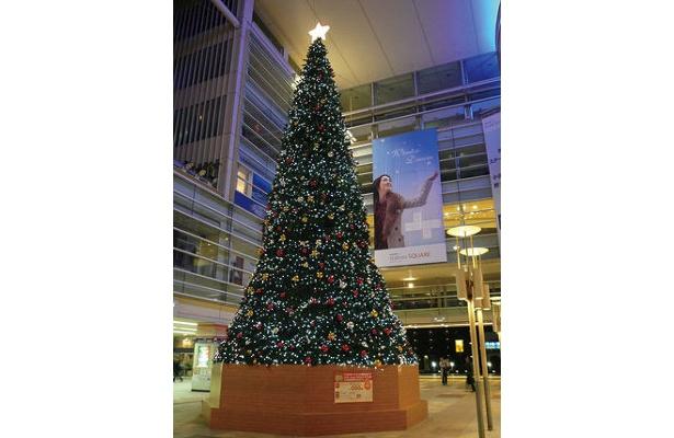 相模大野ステーションスクエアの昨年のクリスマスツリー。迫力!