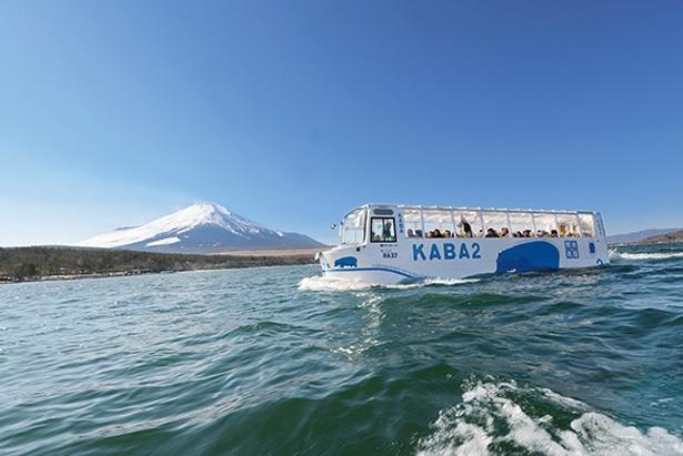 水陸両用バスで湖上をドライブ / YAMANAKAKO NO KABA