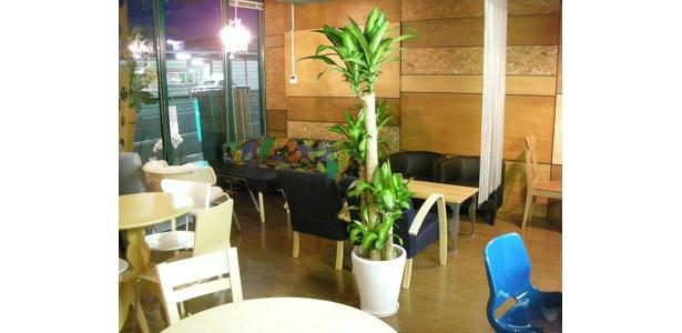 アットホームな雰囲気のカフェでまったり朗読に聞き入ろう