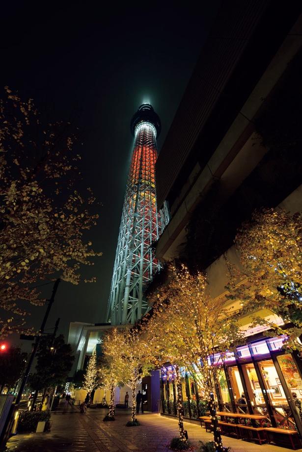 「東京スカイツリータウン(R)ドリームクリスマス2017」は約52万球の電球でライトアップ