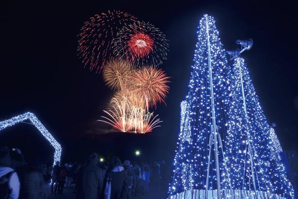 【写真を見る】最終日には瑠璃色の光の背後に、奈良公園の138回目の誕生日を祝うバースデー花火を盛大に打ち上げる予定/第9回しあわせ回廊なら瑠璃絵