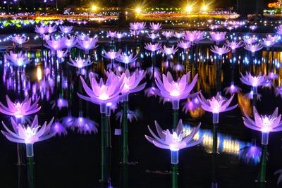 光る睡蓮をイメージしたエリアは、水面に移る光が幻想的