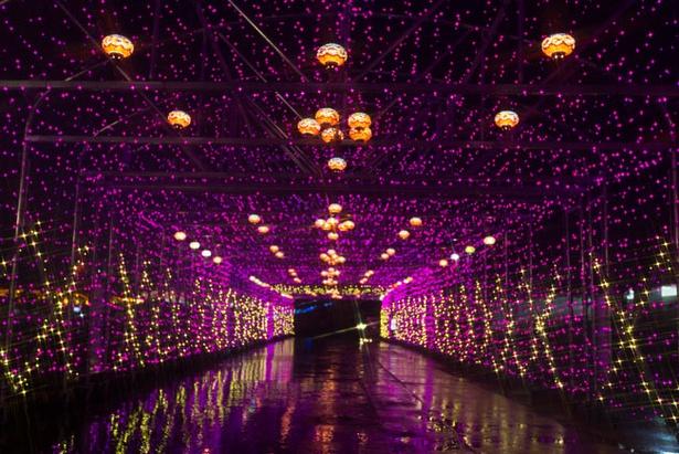 光のトンネルなど趣向を凝らしたイルミネーションは幻想的な雰囲気