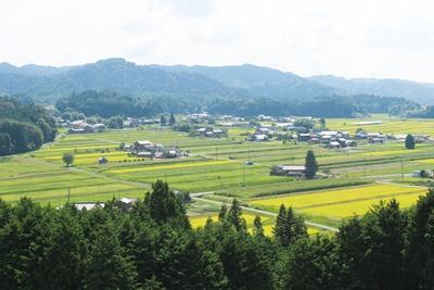 飯羽間駅前後に広がる田園風景も楽しもう