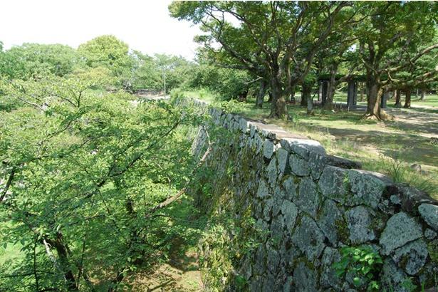 見事な石垣に城が歩んできた歴史を感じる。ベンチなども整備され、市民憩いの公園として親しまれている