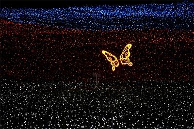 LEDの蝶々が花畑の上を飛ぶ